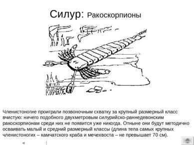 Типичная животная клетка English:Diagram of a typical animalcell. Organelles ...
