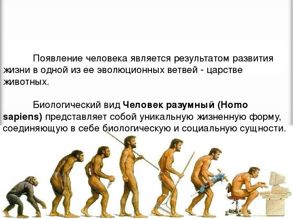 Появление человека является результатом развития жизни в одной из ее эволюцио...