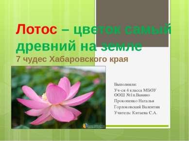 Лотос – цветок самый древний на земле 7 чудес Хабаровского края Выполнили: Уч...