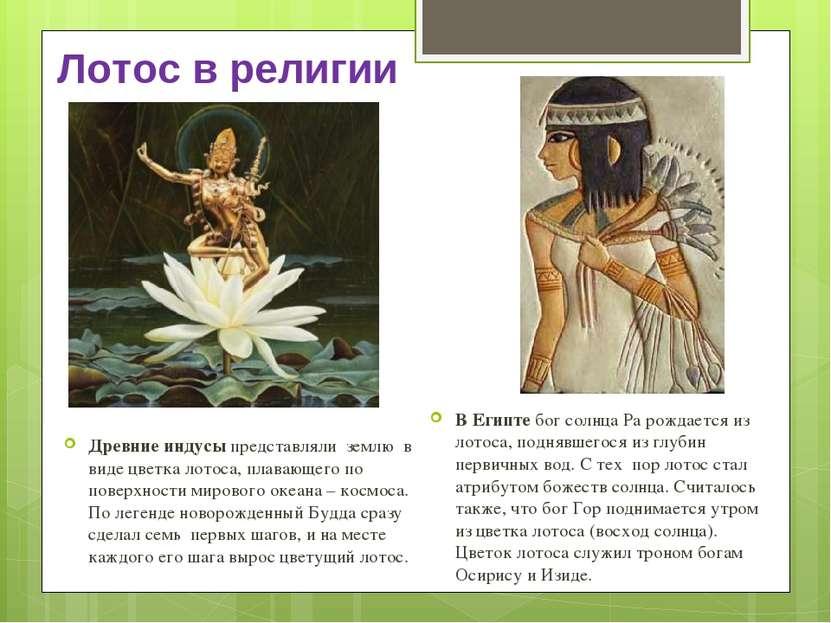 Лотос в религии Древние индусы представляли землю в виде цветка лотоса, плава...