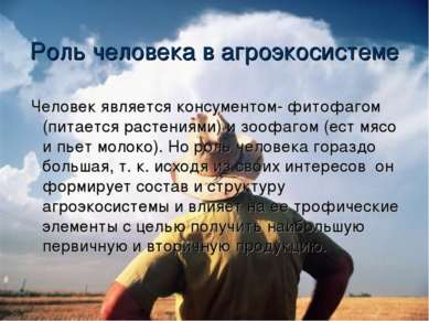 Роль человека в агроэкосистеме Человек является консументом- фитофагом (питае...