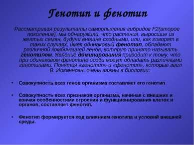 Генотип и фенотип Рассматривая результаты самоопыления гибридов F2(второе пок...