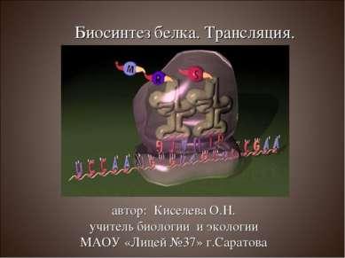 Биосинтез белка. Трансляция. автор: Киселева О.Н. учитель биологии и экологии...