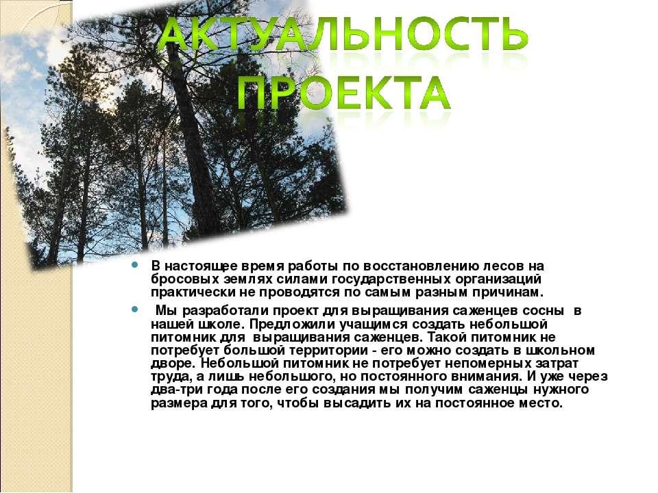 В настоящее время работы по восстановлению лесов на бросовых землях силами го...