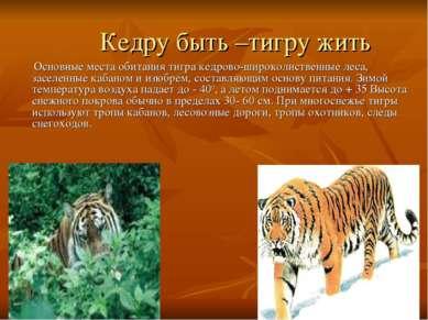 Кедру быть –тигру жить Основные места обитания тигра кедрово-широколиственные...