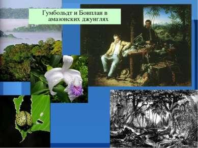 Гумбольдт и Бонплан в амазонских джунглях