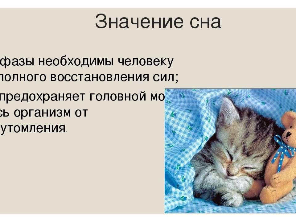 Значение сна Обе фазы необходимы человеку для полного восстановления сил; Сон...