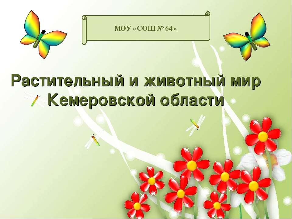 Растительный и животный мир Кемеровской области МОУ «СОШ №64»