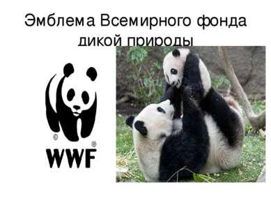 Эмблема Всемирного фонда дикой природы