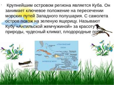 Крупнейшим островом региона является Куба. Он занимает ключевое положение на...