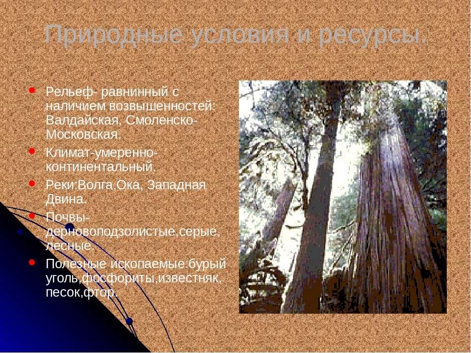 Природные условия и ресурсы. Рельеф- равнинный с наличием возвышенностей: Вал...