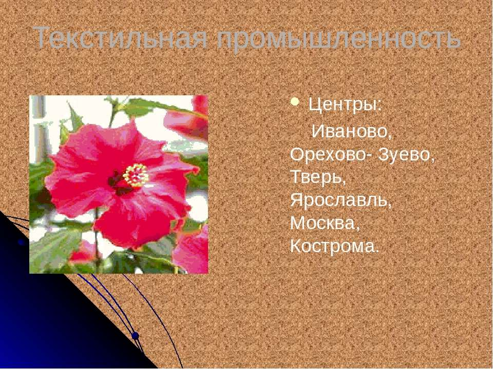Текстильная промышленность Центры: Иваново, Орехово- Зуево, Тверь, Ярославль,...