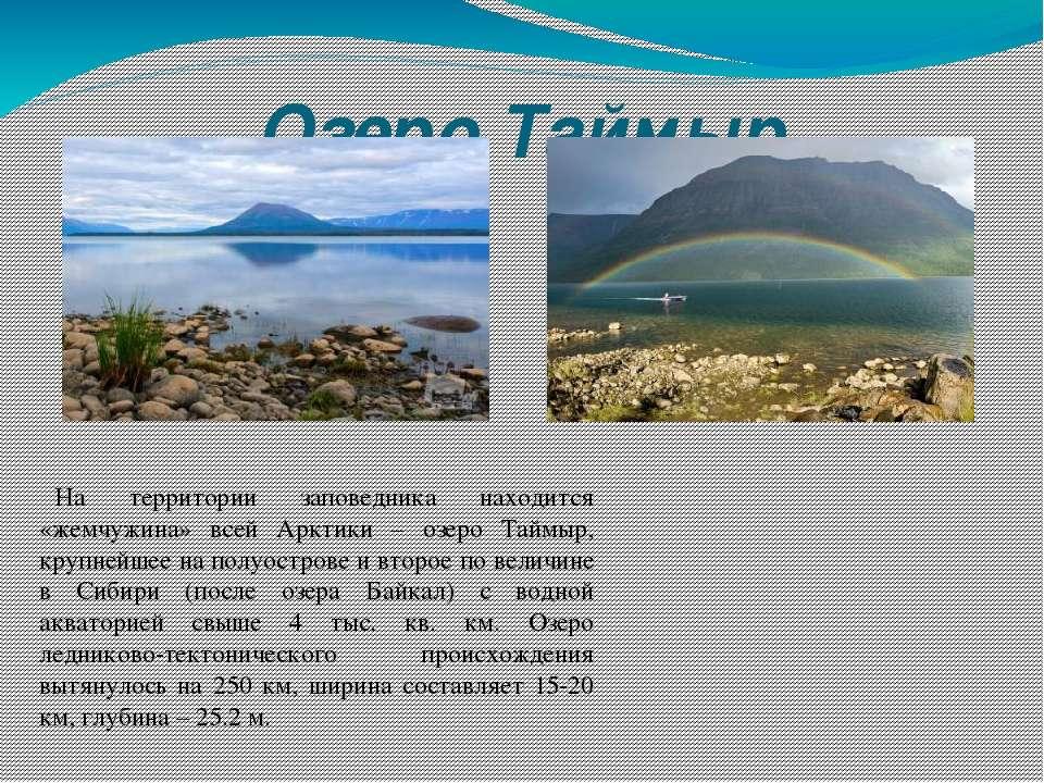 Озеро Таймыр На территории заповедника находится «жемчужина» всей Арктики – о...