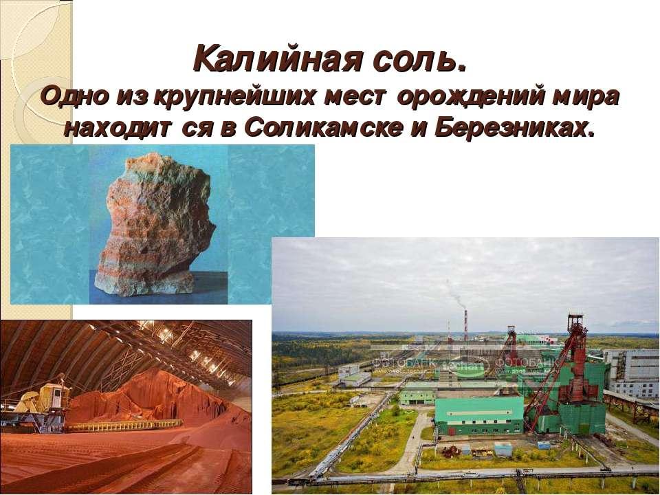 Калийная соль. Одно из крупнейших месторождений мира находится в Соликамске и...
