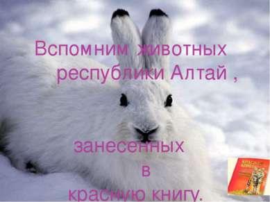 Вспомним животных республики Алтай , занесенных в красную книгу.