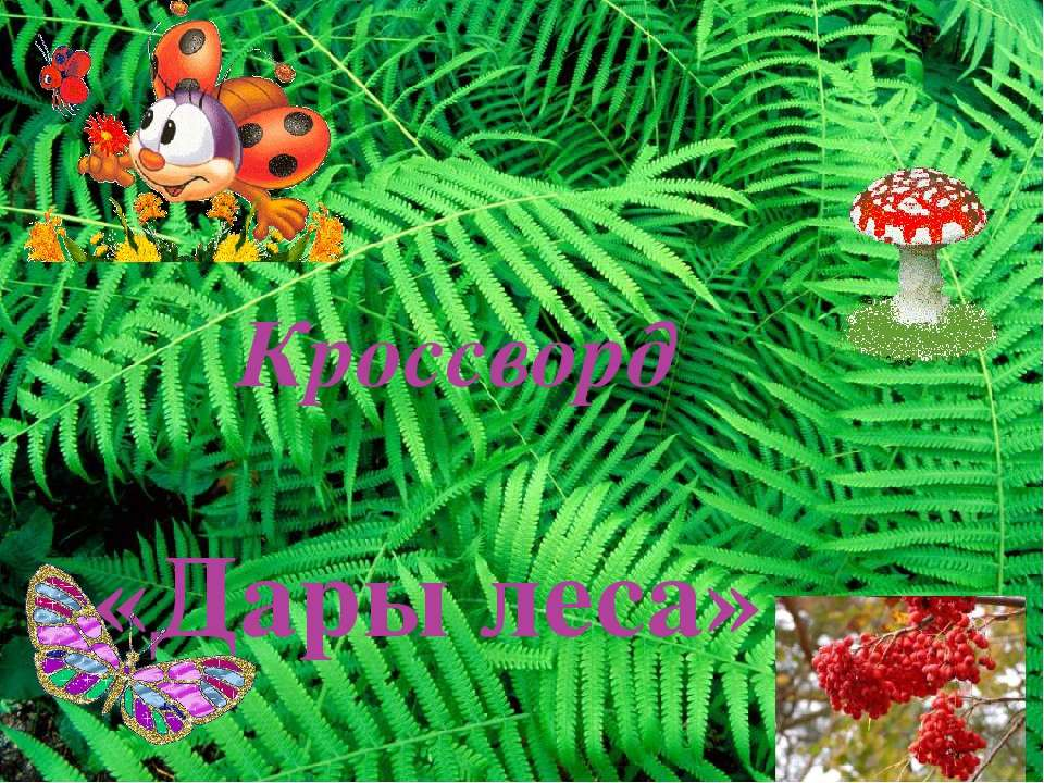 Кроссворд «Дары леса»
