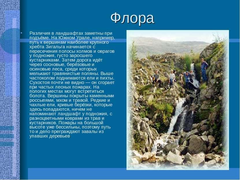 Флора Различия в ландшафтах заметны при подъёме. На Южном Урале, например, пу...