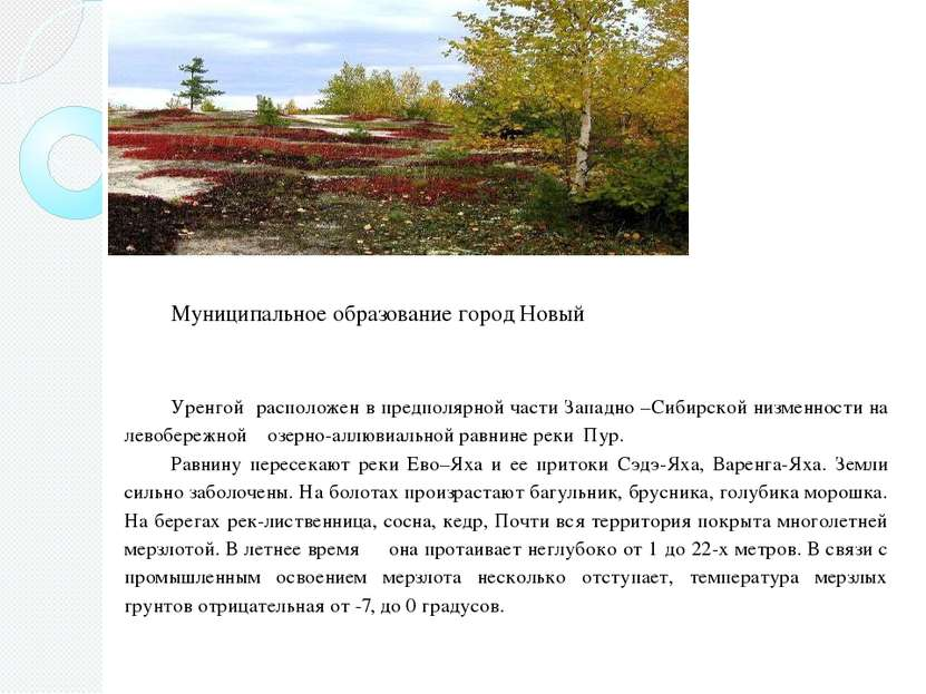 Муниципальное образование город Новый Уренгой расположен в предполярной части...