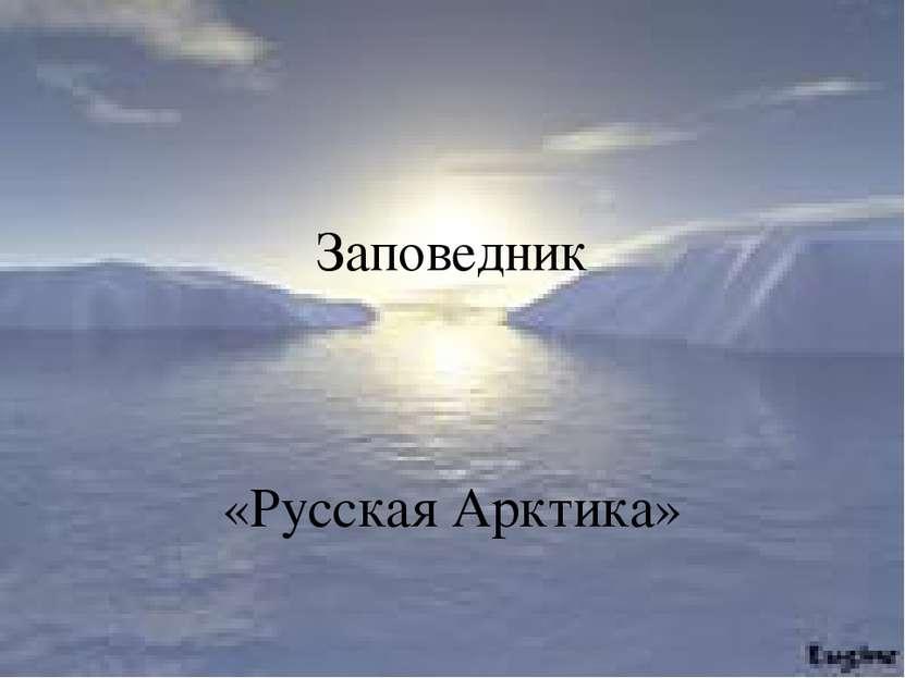 Заповедник «Русская Арктика» Заповедник «Русская Арктика»