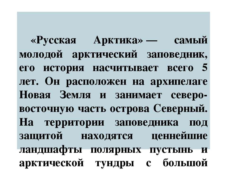 «Русская Арктика»— самый молодой арктический заповедник, его история насчиты...