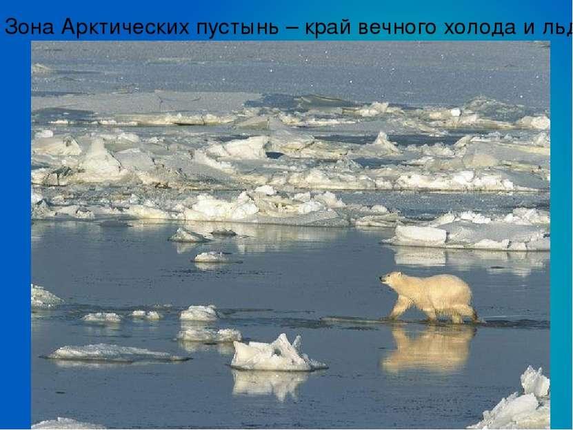 Зона Арктических пустынь – край вечного холода и льда.