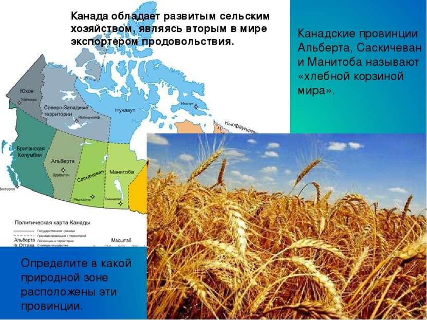 Канадские провинции Альберта, Саскичеван и Манитоба называют «хлебной корзино...
