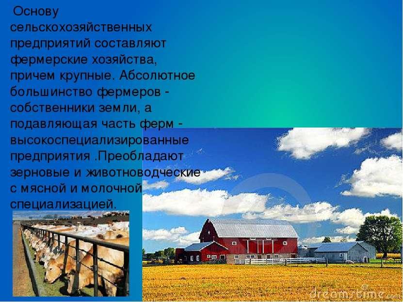 Основу сельскохозяйственных предприятий составляют фермерские хозяйства, при...