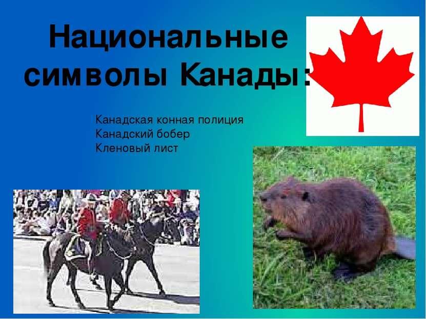 Национальные символы Канады: Канадская конная полиция Канадский бобер Кленовы...