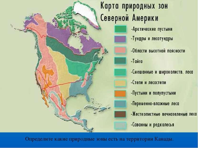 Определите какие природные зоны есть на территории Канады.