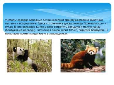 Учитель: северно-западный Китай населяют преимущественно животные пустынь и п...