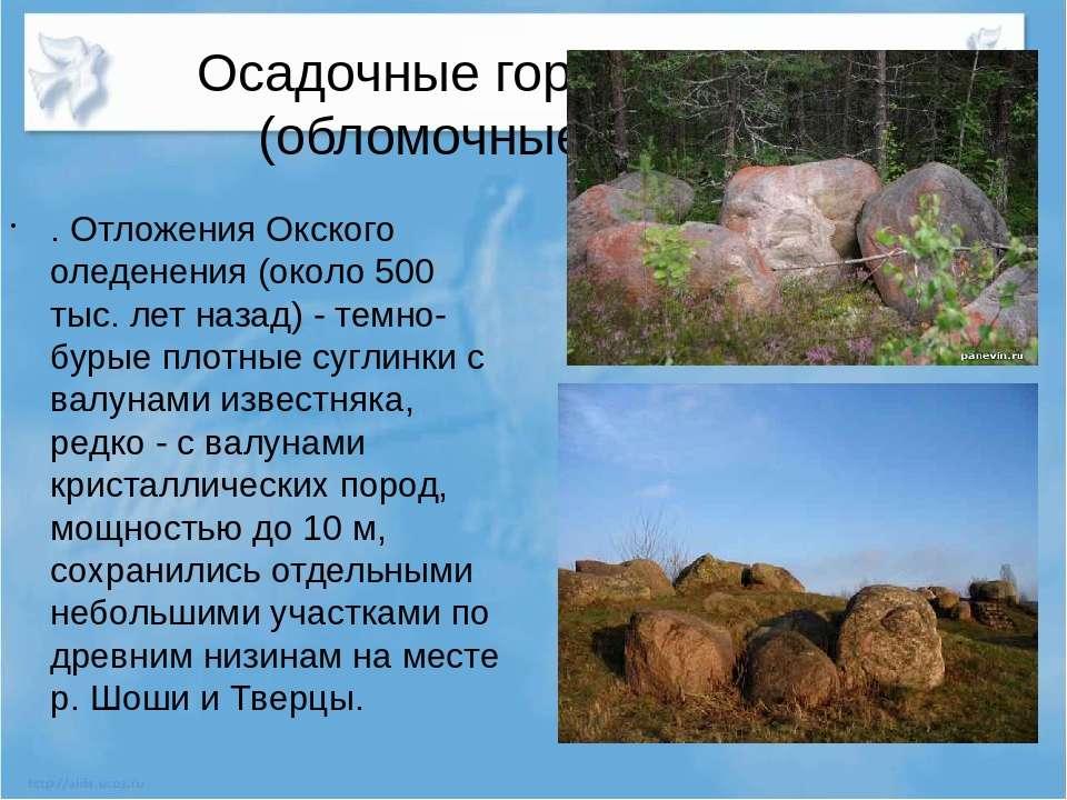 Осадочные горные породы (обломочные) Валуны . Отложения Окского оледенения (о...