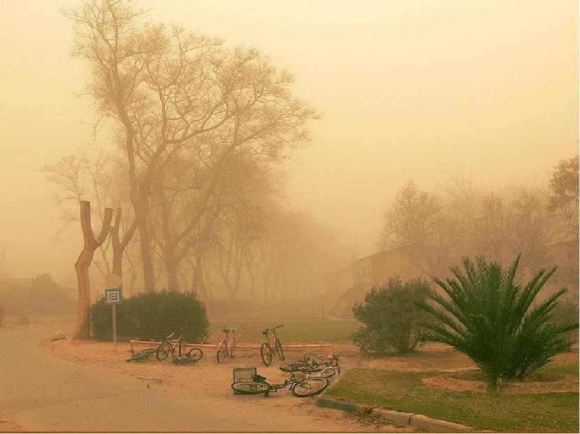 В песчаных пустынях ветер иногда поднимает песчаные бури – воздух наполняется...