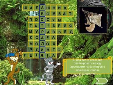 Использованные источники: http://images.yandex.ru http://ru.wikipedia.org htt...