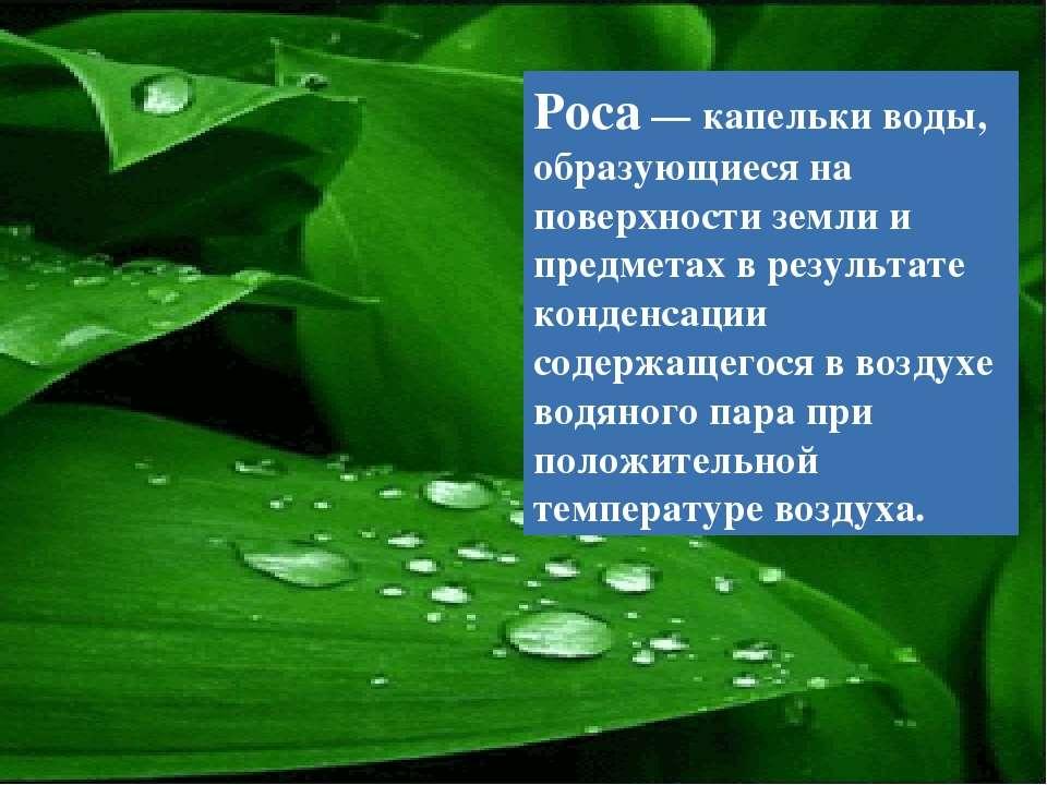 Роса — капельки воды, образующиеся на поверхности земли и предметах в результ...