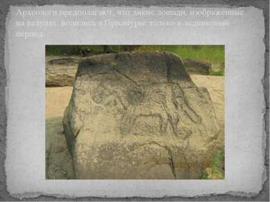 Археологи предполагают, что дикие лошади, изображённые на валунах, водились в...