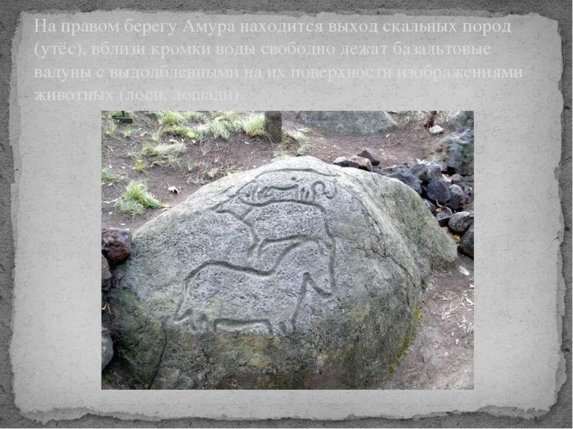На правом берегу Амура находится выход скальных пород (утёс), вблизи кромки в...