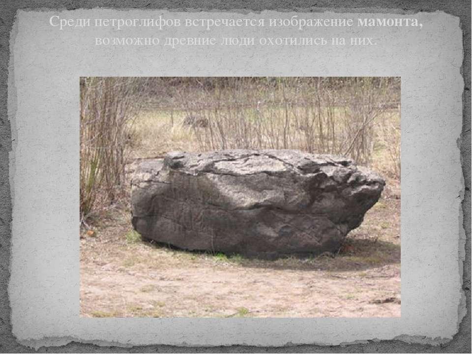 Среди петроглифов встречается изображение мамонта, возможно древние люди охот...