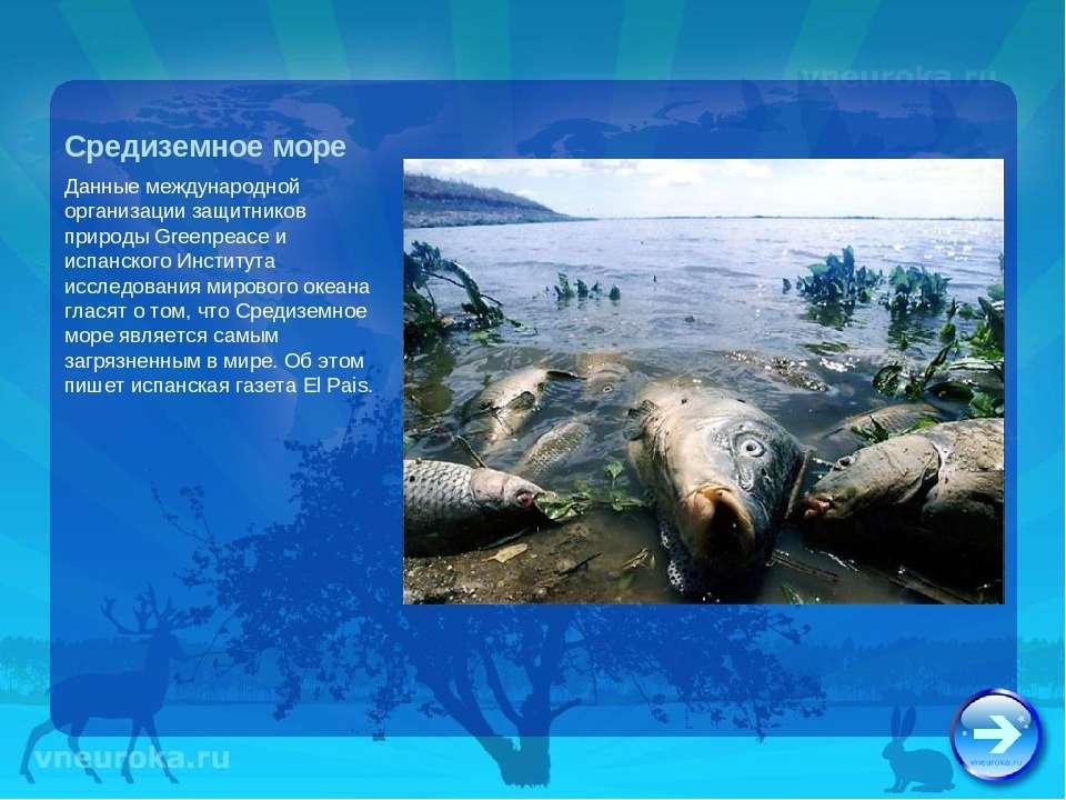 Средиземное море Данные международной организации защитников природы Greenpea...