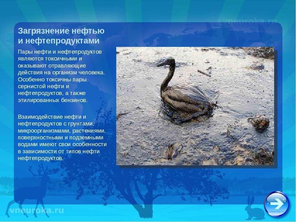 Загрязнение нефтью и нефтепродуктами Пары нефти и нефтепродуктов являются ток...