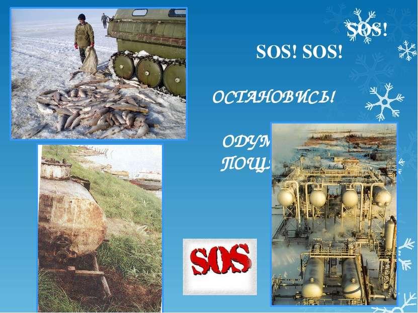 SOS! SOS! SOS! ОСТАНОВИСЬ! ОДУМАЙСЯ! ПОЩАДИ!