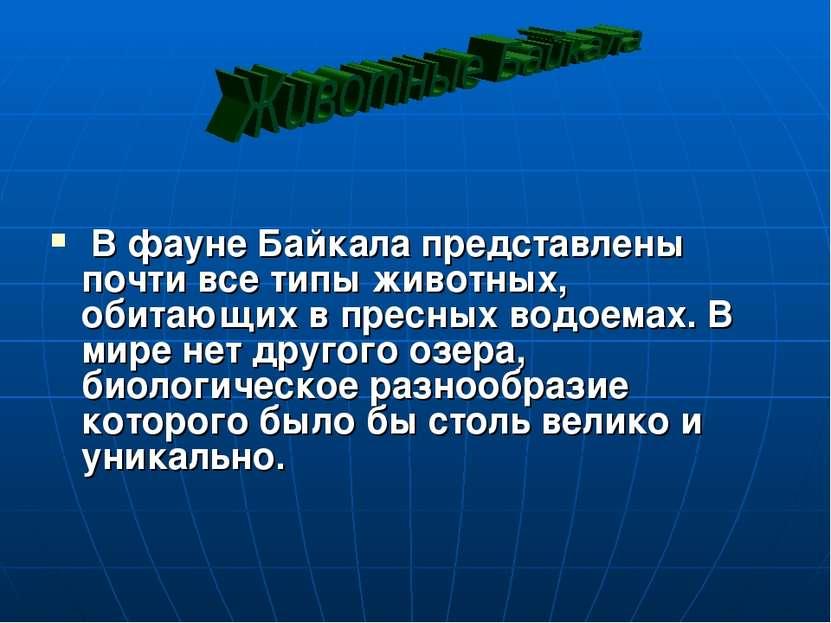В фауне Байкала представлены почти все типы животных, обитающих в пресных вод...