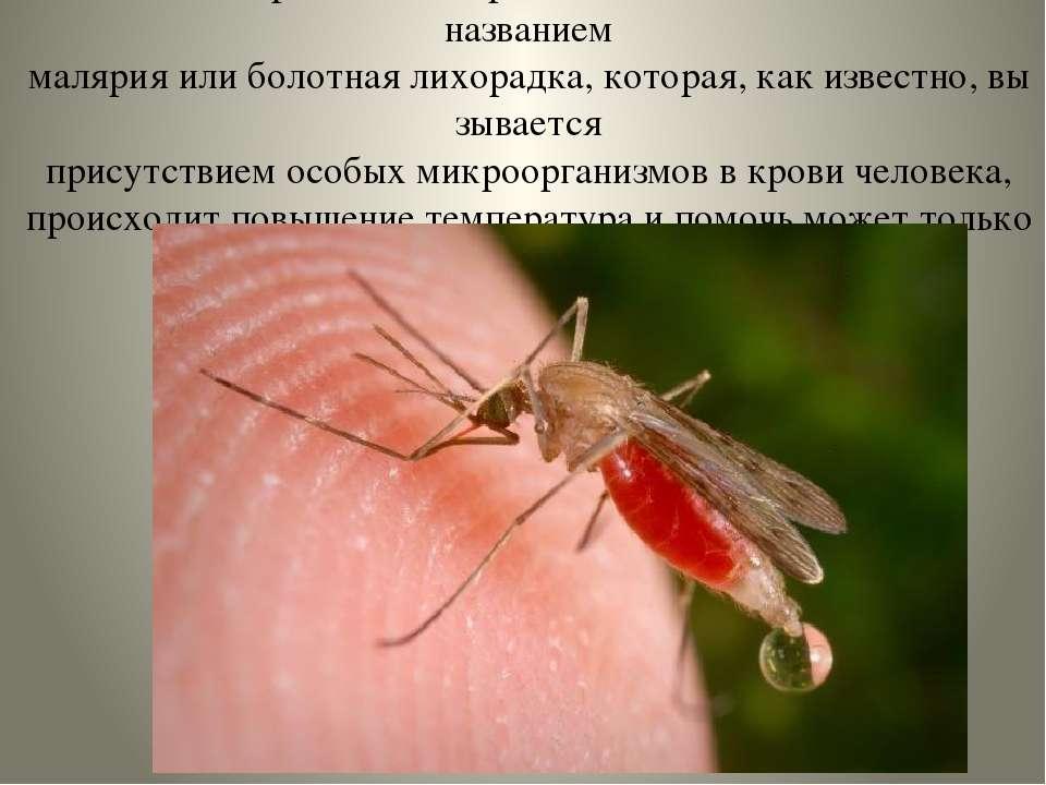 Этот комарявляются разносчиками болезни - под названием малярияилиболот...