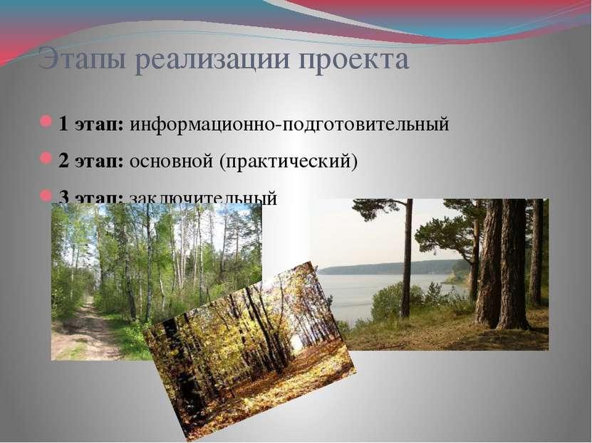 Этапы реализации проекта 1 этап: информационно-подготовительный 2 этап: основ...