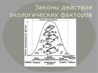 Законы действия экологических факторов