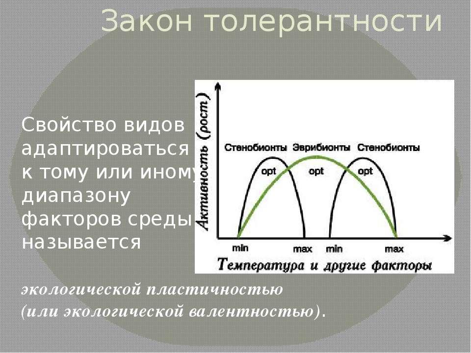 Закон толерантности Свойство видов адаптироваться к тому или иному диапазону ...
