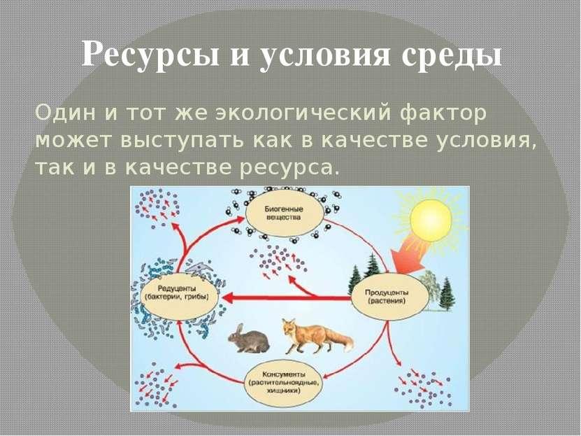 Один и тот же экологический фактор может выступать как в качестве условия, та...