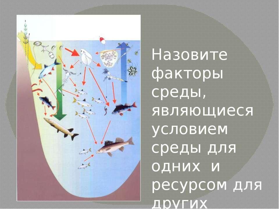 Назовите факторы среды, являющиеся условием среды для одних и ресурсом для др...