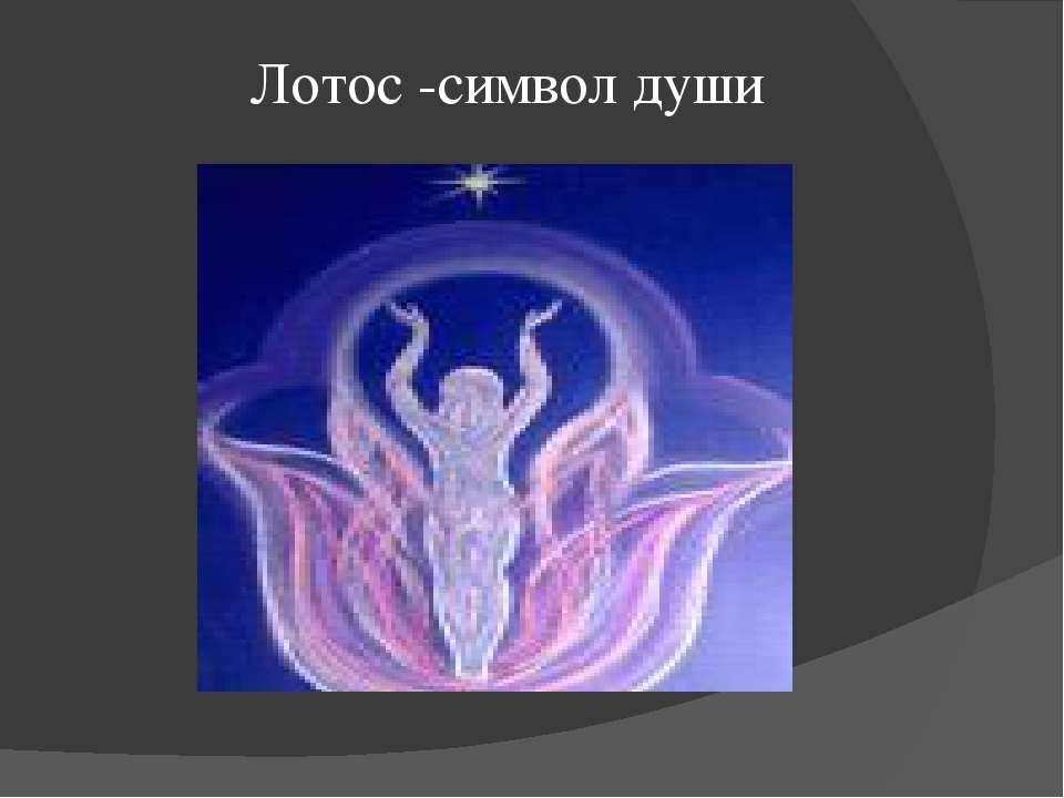 Лотос -символ души