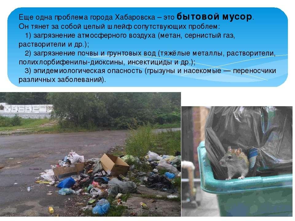 Еще одна проблема города Хабаровска – это бытовой мусор. Он тянет за собой це...