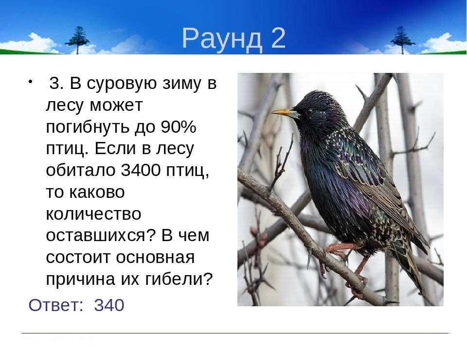 Раунд 2 3. В суровую зиму в лесу может погибнуть до 90% птиц. Если в лесу оби...